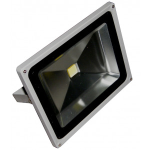 ELYSSA 50 Watt Weatherproof LED Floodlight