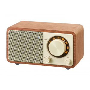 SANGEAN Mini Bluetooth Speaker with FM Radio