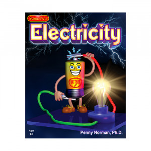 SCIENCE WIZ Electricity Projects