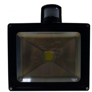 ELYSSA 30 Watt LED Motion Sensor Floodlight